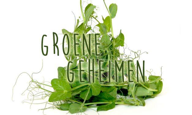 Groene geheimen: Erwtenscheuten