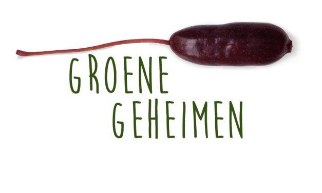 Groene geheimen: Fuchsiabessen