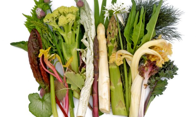 Vaste groenten in de moestuin