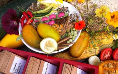 Boxtel: Verrassend veelzijdig voedsellandschap