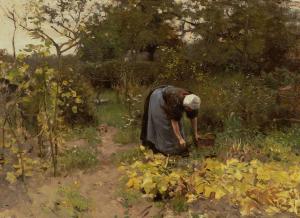 De kunst van tuinieren: Mauve2