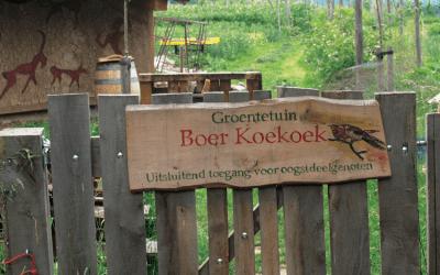De stad ontkiemt: Boer Koekoek
