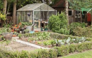 Tuinieren onder glas