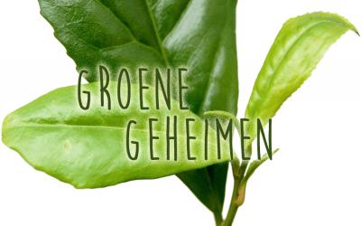 Groene geheimen: Theeplant