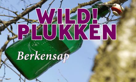 Wildplukken: Tap je sap