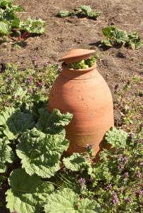 De kok: De ommuurde tuin 9