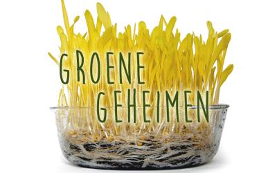 Groene geheimen: Popcornkiemen