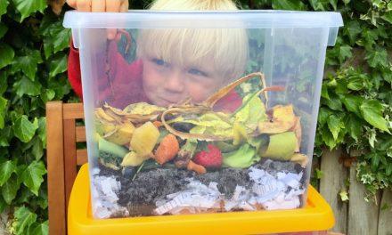 Met de kids: Zelf een wormenbak maken
