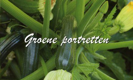 Groene Portretten: Courgette