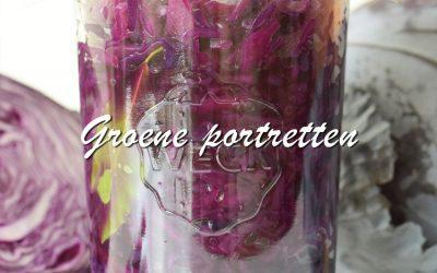 Groene Portretten: Rodekool