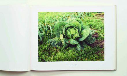 De kunst van tuinieren – SIMONE NIEWEG