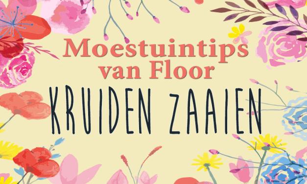 Moestuintips van Floor: Kruiden zaaien