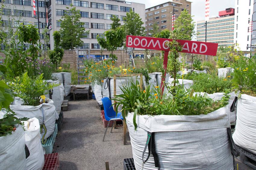 Tuin interieur ideeën tips en ideeën voor een tuinontwerp