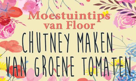 Moestuintips van Floor: Chutney van groene tomaten