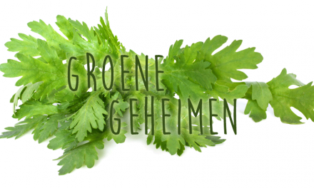 Groene geheimen: Chop suey groente