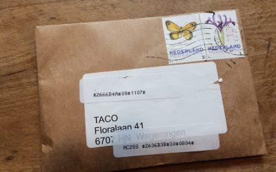 Zaden van erwten en bonen oogsten en bewaren – Tip van Taco