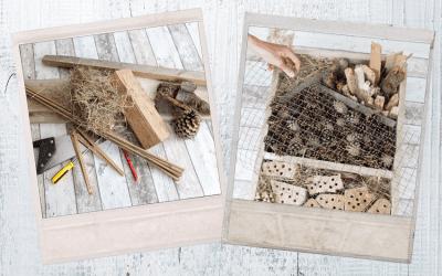 Doe het zelf: Insectenhotel