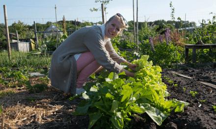 Cashew way of life: De tuin van Aletta Buurma