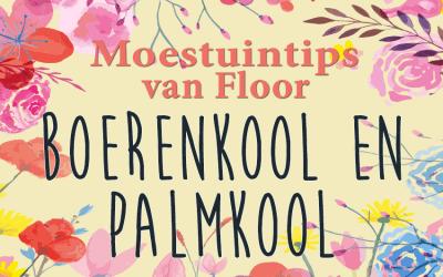 Moestuintips van Floor: Boerenkool en Palmkool