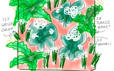 Moestuinplannen van Peter Bauwens: Tuin 4