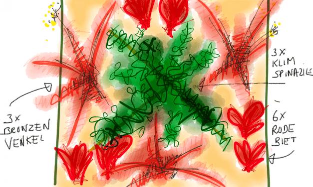 Moestuinplannen van Peter Bauwens: Tuin 5