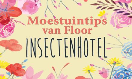 Moestuintips van Floor: Insectenhotel