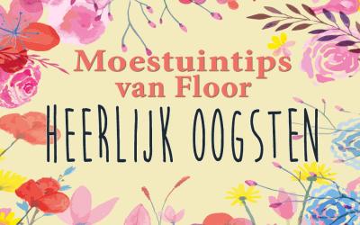 Moestuintips van Floor: Oogsttips