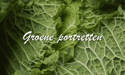 Groene Portretten: Savooiekool