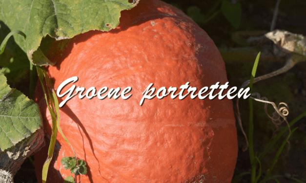 Groene Portretten: Pompoen