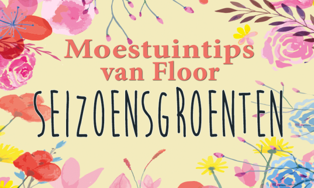 Moestuintips van Floor: Seizoensgroenten