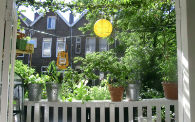 Sanne van Aperen: Moestuinieren op balkon