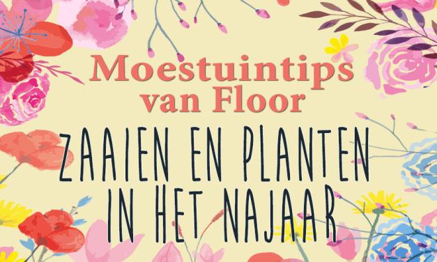 Moestuintips van Floor: Zaaien en planten in het najaar