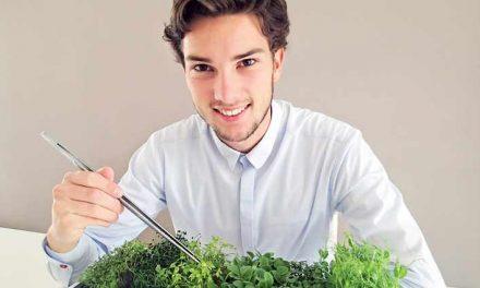 Snel en gemakkelijk microgroenten kweken