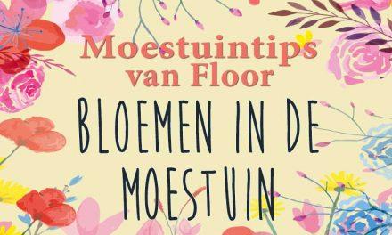 Moestuintips van Floor: Bloemen in de moestuin