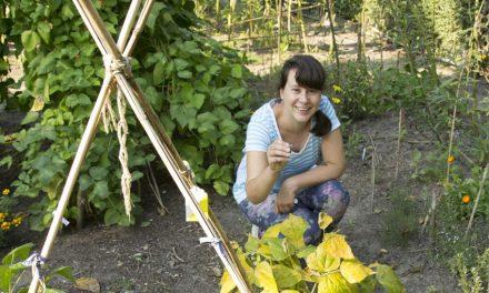 De kunst van tuinieren – SABINE BOLK