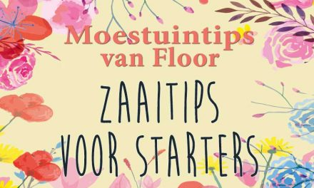 Moestuintips van Floor: Zaaitips voor de starter
