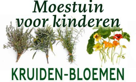 Moestuin voor kinderen: Kruiden en bloemen