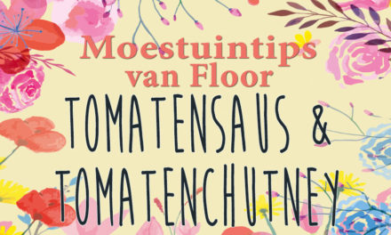 Moestuintips van Floor: Tomatensaus en tomatenchutney