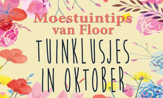 Moestuintips van Floor: Moestuin in oktober